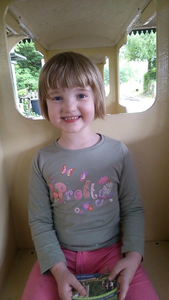 R on train
